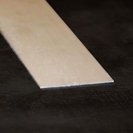 Plintenfabriek | RVS-strip - eenvoudig online bestellen